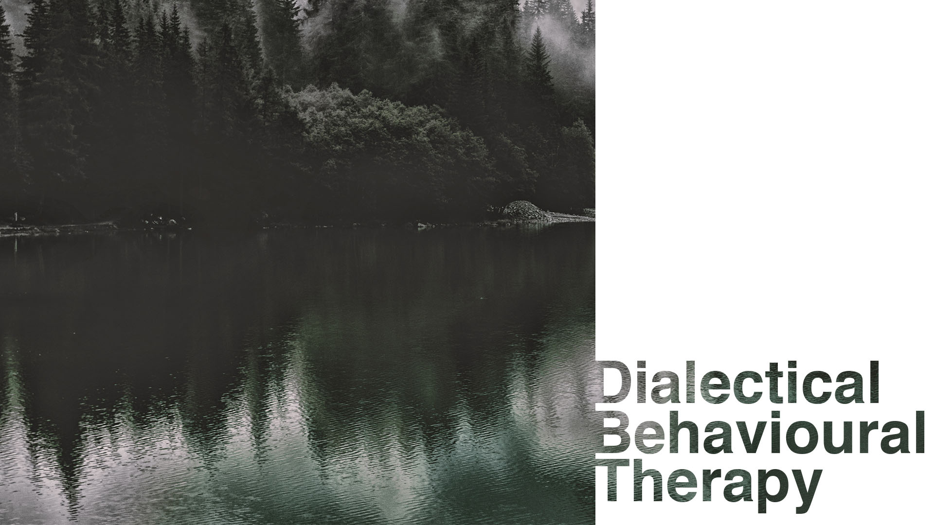 Dialectical Behavioural Therapy hoxton therapy